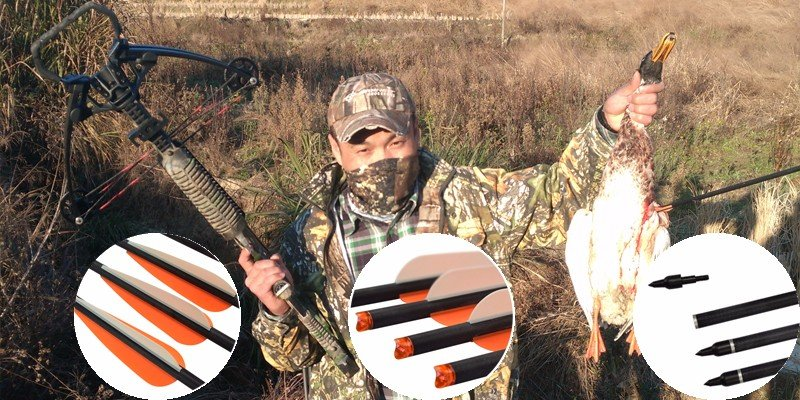 hunting crossbow, crossbow arrow