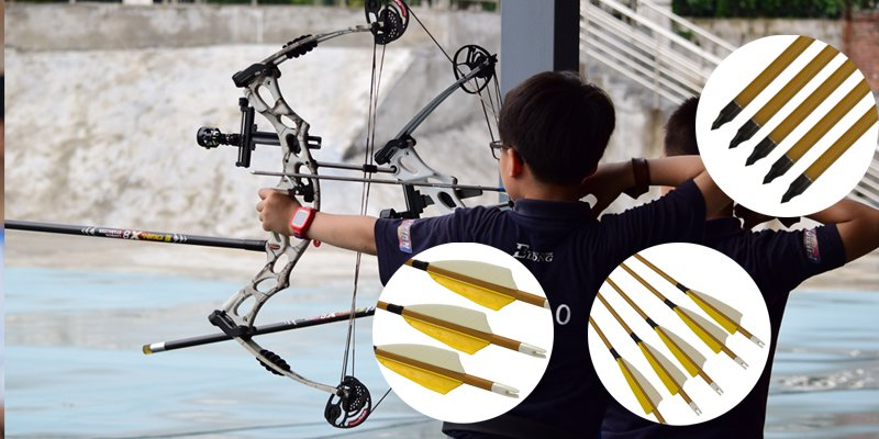 bow and arrow for sales, best carbon arrows